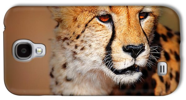 Cheetah Portrait Galaxy S4 Case by Johan Swanepoel