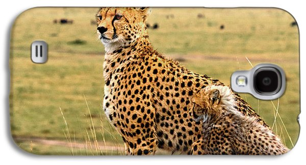 Cheetahs Galaxy S4 Case by Babak Tafreshi