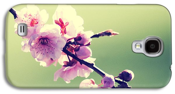 Galaxy S4 Case featuring the photograph Cherry Blooms by Yulia Kazansky