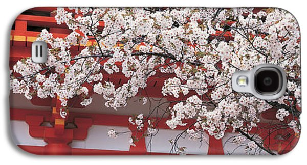 Cherry Blossom Kamigamo Shrine Kyoto Galaxy S4 Case by Panoramic Images