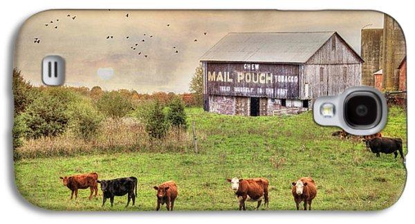 Chew Mail Pouch Galaxy S4 Case by Lori Deiter