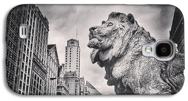 Art Institute Of Chicago Lion Picture Galaxy S4 Case