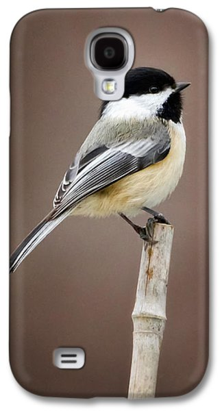 Chickadee Galaxy S4 Case by Bill Wakeley