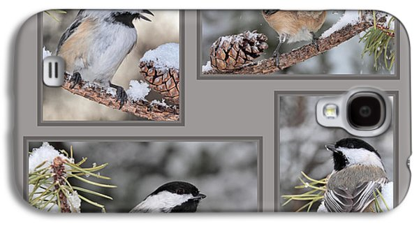 Chickadees In Winter Galaxy S4 Case