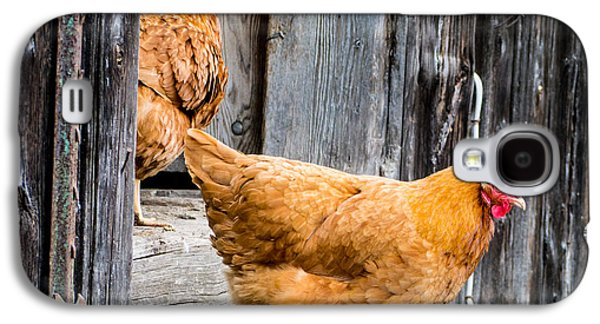 Chickens At The Barn Galaxy S4 Case by Edward Fielding