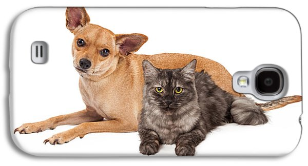 Chihuahua Dog And Gray Cat Galaxy S4 Case by Susan Schmitz