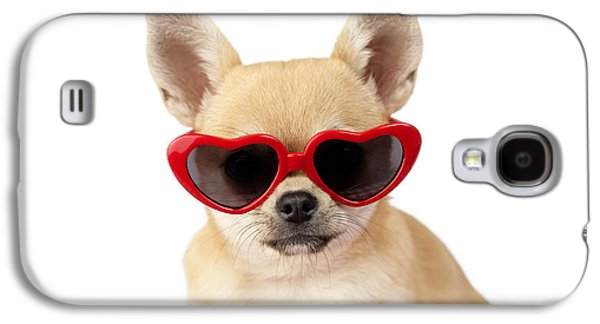 Chihuahua In Heart Sunglasses Dp813 Galaxy S4 Case by Greg Cuddiford