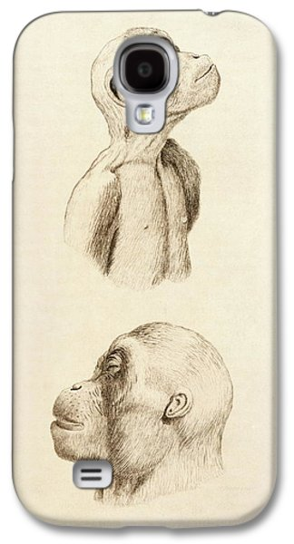 Orangutan Galaxy S4 Case - Chimpanzee And Orangutan by King's College London