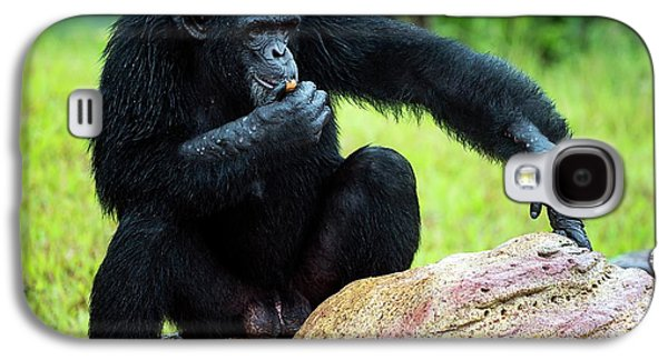 Chimpanzees Galaxy S4 Case by Pan Xunbin
