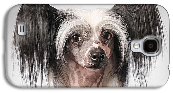 Chinese Crested Hairless Puppy  Galaxy S4 Case