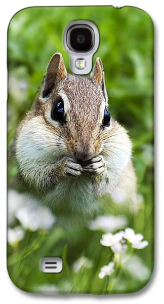 Chipmunk Subtle Strategist  Galaxy S4 Case by Christina Rollo