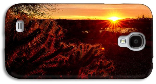 Cholla On Fire Galaxy S4 Case by Kelly Gibson