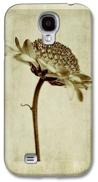 Chrysanthemum In Sepia Galaxy S4 Case by John Edwards