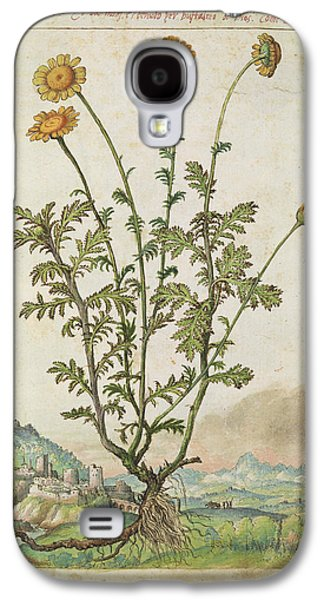 Chrysanthemum Sp. Galaxy S4 Case by British Library