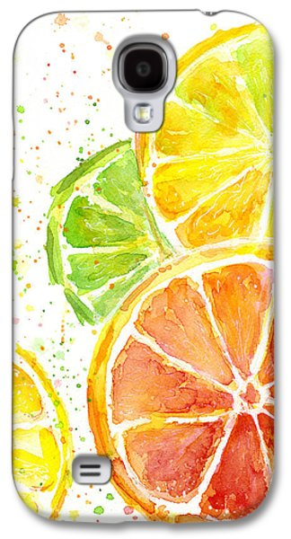 Citrus Fruit Watercolor Galaxy S4 Case by Olga Shvartsur