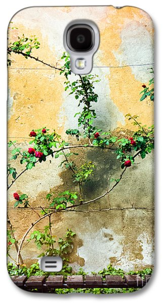 Galaxy S4 Case featuring the photograph Climbing Rose Plant by Silvia Ganora