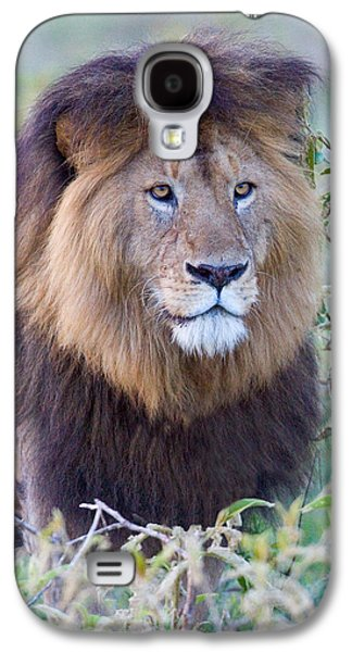 Close-up Of A Black Maned Lion Galaxy S4 Case by Panoramic Images