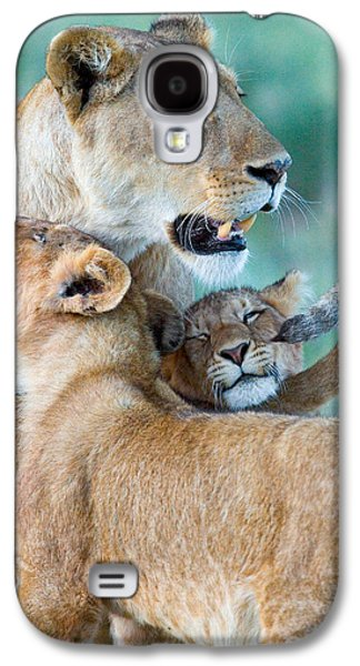 Close-up Of A Lioness And Her Two Cubs Galaxy S4 Case by Panoramic Images