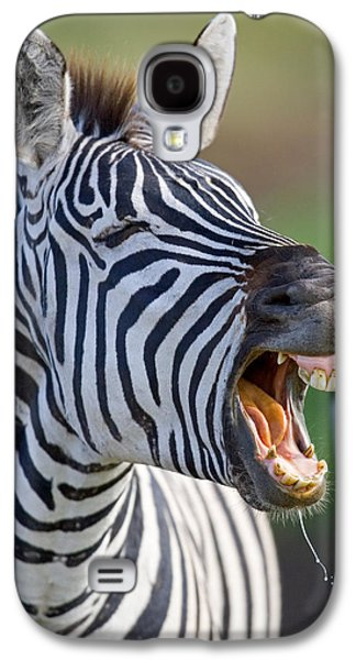 Close-up Of A Zebra Calling, Ngorongoro Galaxy S4 Case by Panoramic Images