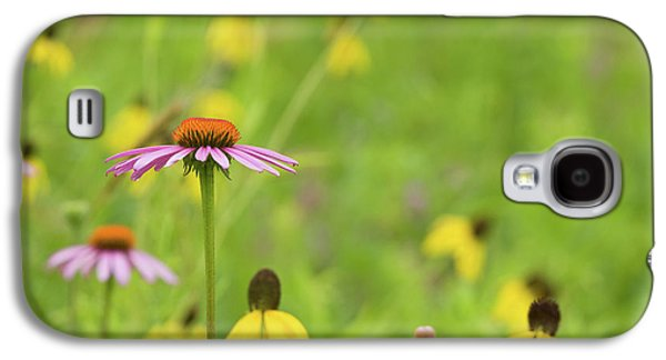 Close-up Of Various Coneflowers Galaxy S4 Case