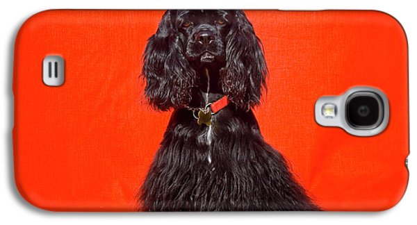 Cocker Spaniel Sitting Against Red Galaxy S4 Case by Zandria Muench Beraldo