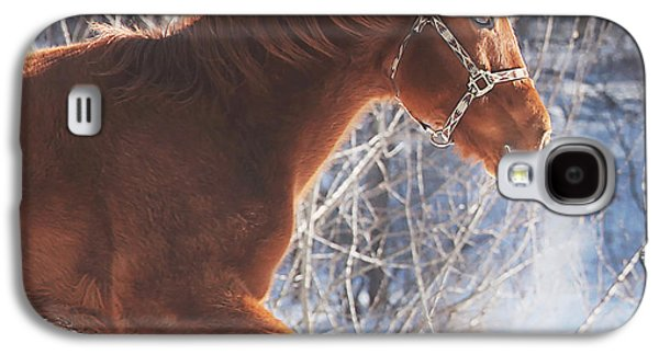 Horse Galaxy S4 Case - Cold by Carrie Ann Grippo-Pike