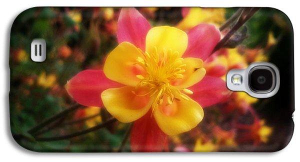 Color Burst Galaxy S4 Case
