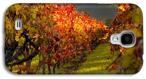 Color On The Vine Galaxy S4 Case