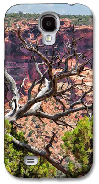 Colorado National Monument Dead Branches Galaxy S4 Case by Christopher Arndt