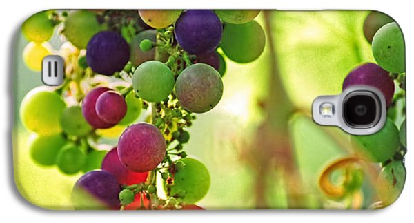 Colorful Grapes Galaxy S4 Case by Peggy Collins