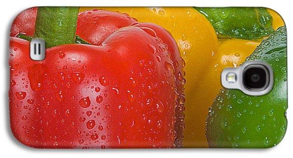 Colorful Trio Galaxy S4 Case