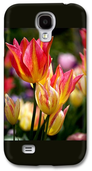 Colorful Tulips Galaxy S4 Case by Rona Black