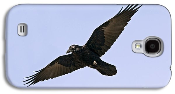 Common Raven Galaxy S4 Case