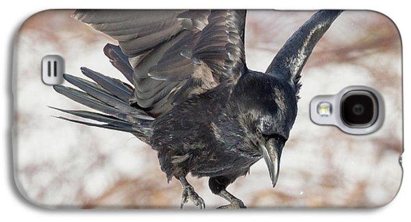 Common Raven Square Galaxy S4 Case