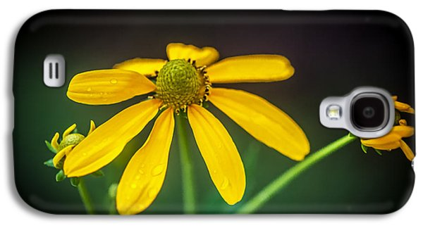 Coneflowers Echinacea Yellow Painted    Galaxy S4 Case by Rich Franco