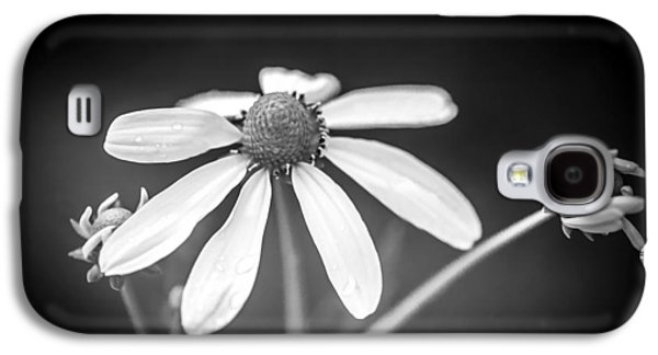 Coneflowers Echinacea Yellow Painted Bw   Galaxy S4 Case by Rich Franco