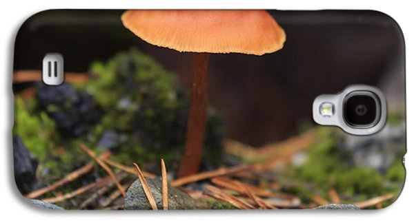 Conical Wax Cap Mushroom Galaxy S4 Case by Louise Heusinkveld