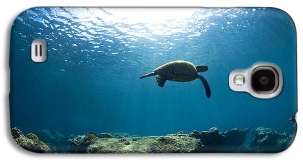 Turtle Galaxy S4 Case - Contemplation by Sean Davey
