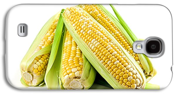 Vegetables Galaxy S4 Case - Corn Ears On White Background by Elena Elisseeva