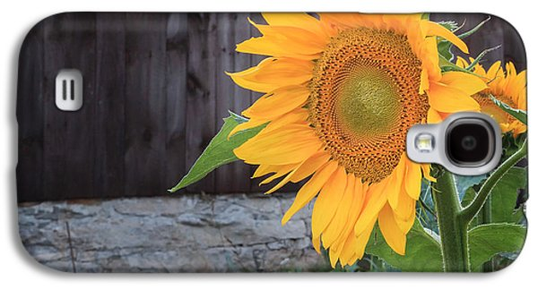 Country Flower Square Galaxy S4 Case by Bill Wakeley