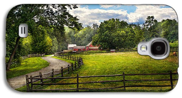 Country - The Pasture  Galaxy S4 Case