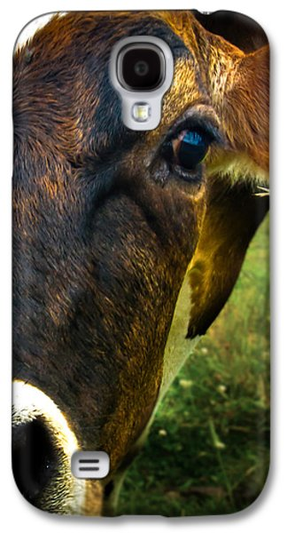 Cow Eating Grass Galaxy S4 Case
