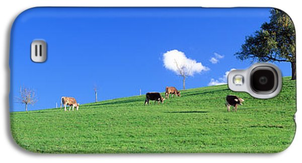 Cows, Canton Zug, Switzerland Galaxy S4 Case by Panoramic Images