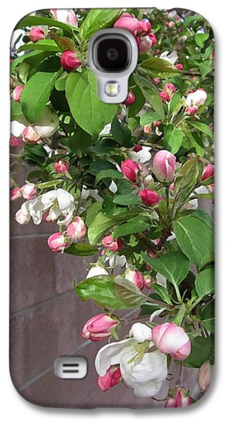 Crabapple Blossoms And Wall Galaxy S4 Case