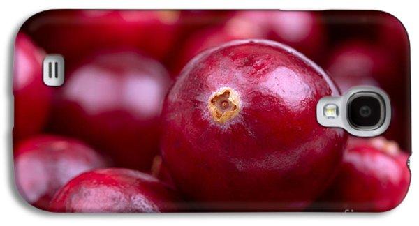 Cranberry Closeup Galaxy S4 Case by Jane Rix
