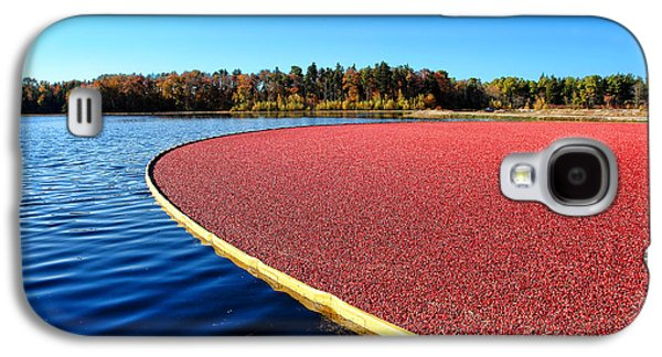 Cranberry Harvest In New Jersey Galaxy S4 Case by Olivier Le Queinec