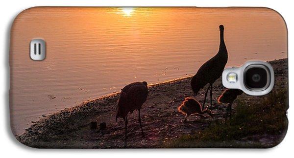 Cranes At Sunset Galaxy S4 Case