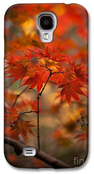 Crown Of Fire Galaxy S4 Case by Mike Reid