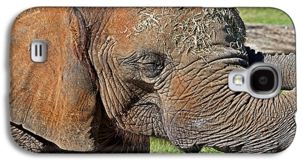 Cuddles Galaxy S4 Case by Miroslava Jurcik