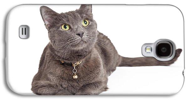 Curious Grey Domestic Shorthair Cat Looking Up Galaxy S4 Case by Susan Schmitz